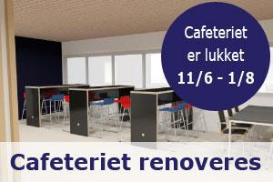 EBH_sidebanner_Renovering